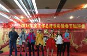 2013年度工作总结表彰暨春节团拜会